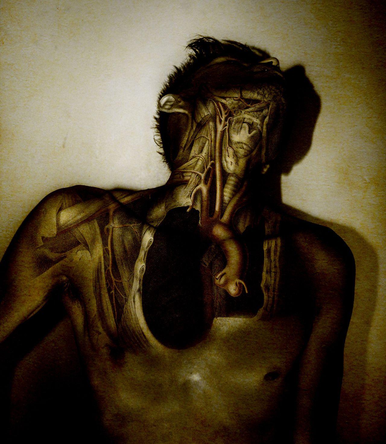 Montaje fotografico de ilustraciones de anatomia de los años 30`s ...