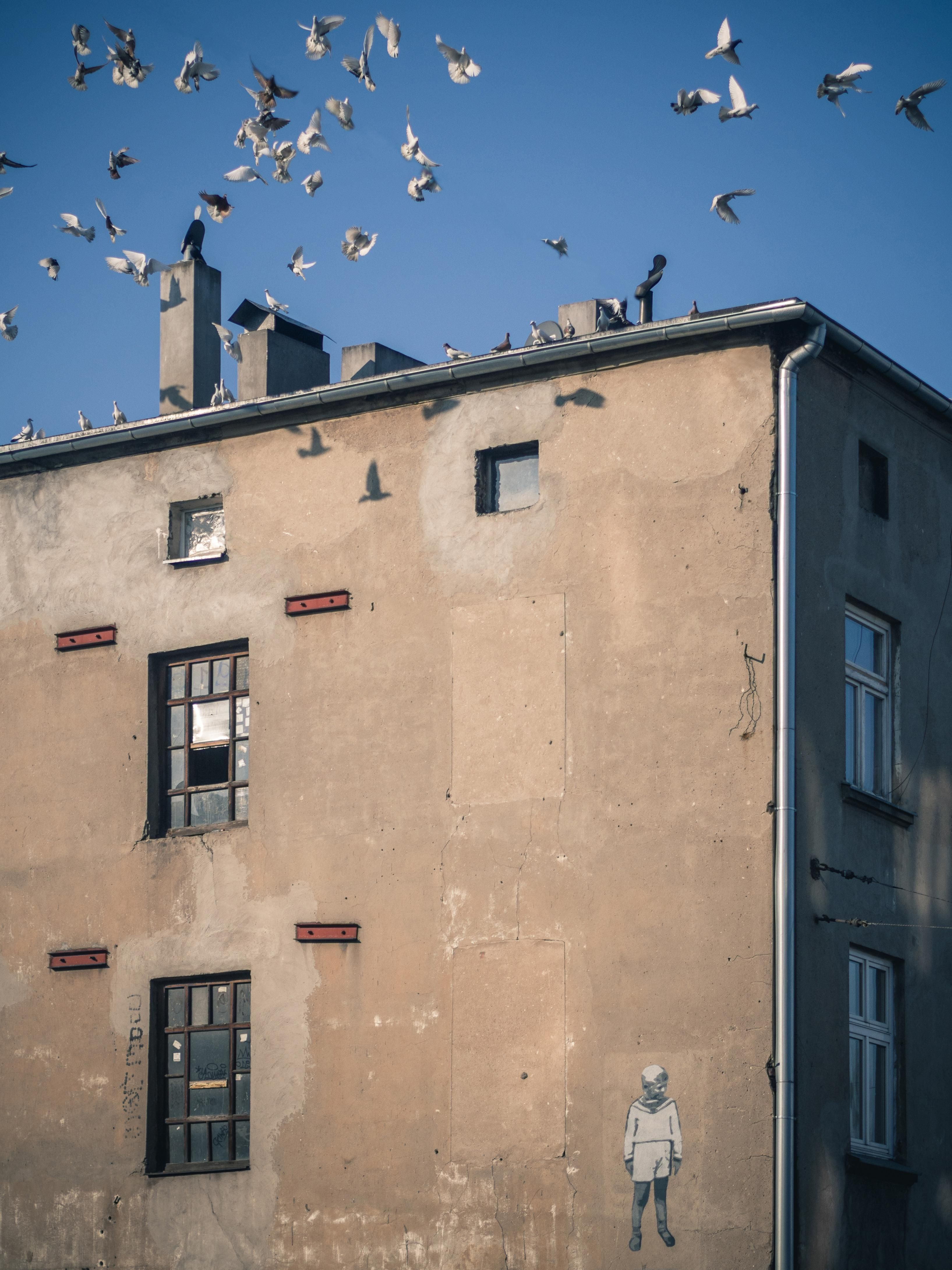 ITAP of tenement with memorial mural in my home town [Bałuty Łódź Poland]#PHOTO #CAPTURE #NATURE #INCREDIBLE