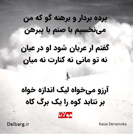 Rumi مثنوی معنوی اشعار مولانا اشعار عرفانی Kasia Derwinska Photography کاشیا دروین Persian Calligraphy Tattoo Calligraphy Tattoo Persian Calligraphy