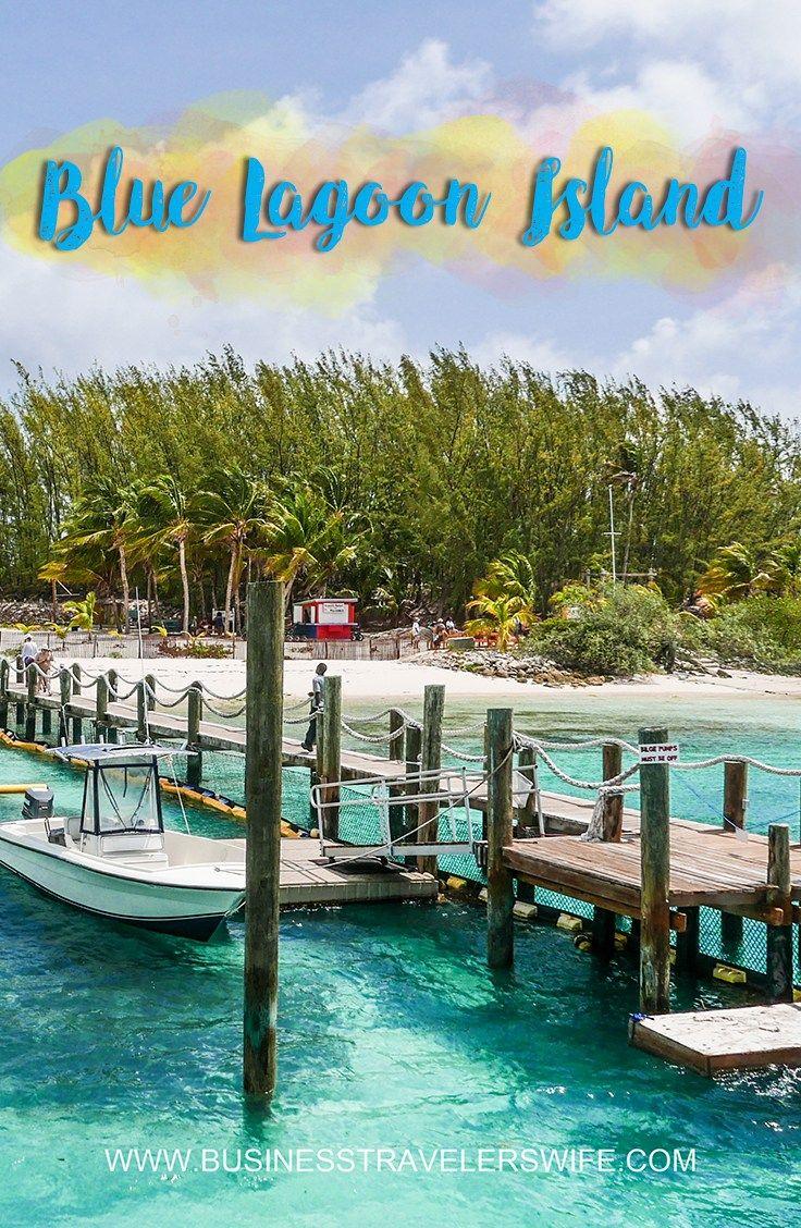 Vip Beach Day And Dolphin Encounter On Blue Lagoon Island