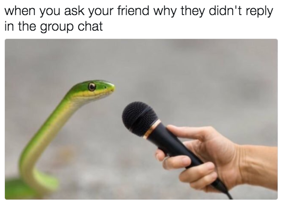 21 Memes To Send To Your Group Chat Immediately Group Chat Meme Memes Funny Memes