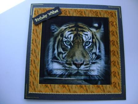 Magnificient Tiger Pyramid on Craftsuprint designed by Faith Wootton - made by Debbie Singfield - cut out image placed on black card layered the rest of the images finish with gold peel offs and sentiment. - Now available for download!
