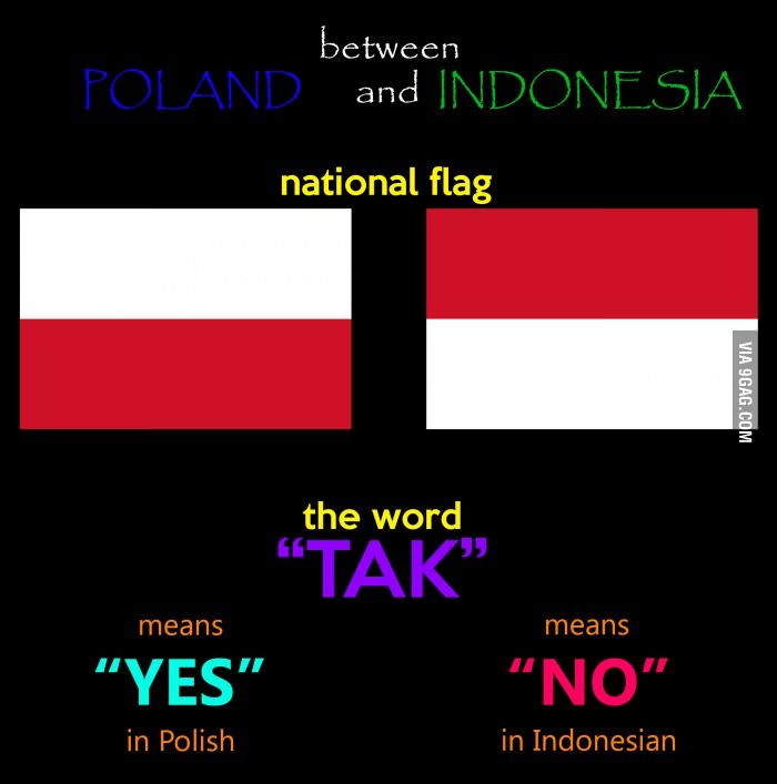 Indonesia Poland Yin And Yang Words Funny Memes Funny
