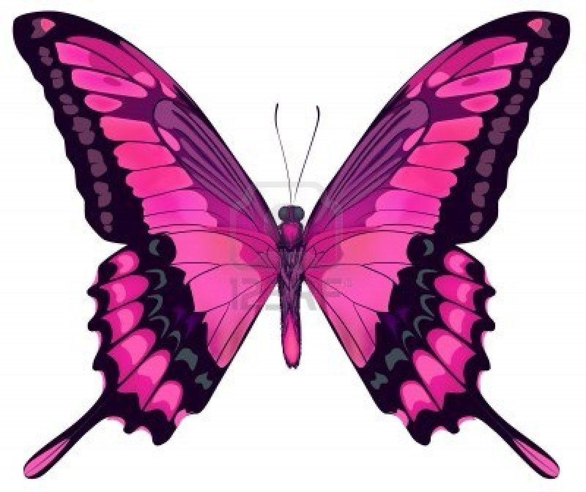 Dessin papillons couleur a imprimer dessin en couleurs - Papillon imprimer ...