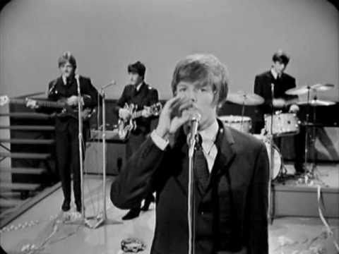 Herman's Hermits - A Must To Avoid (HQ) (Live 1966)