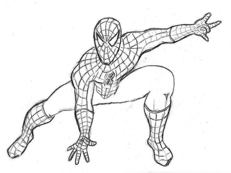The Special Free Spiderman Coloring Book Pictures Colorsfree Pages
