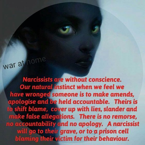 Does the narcissist feel remorse