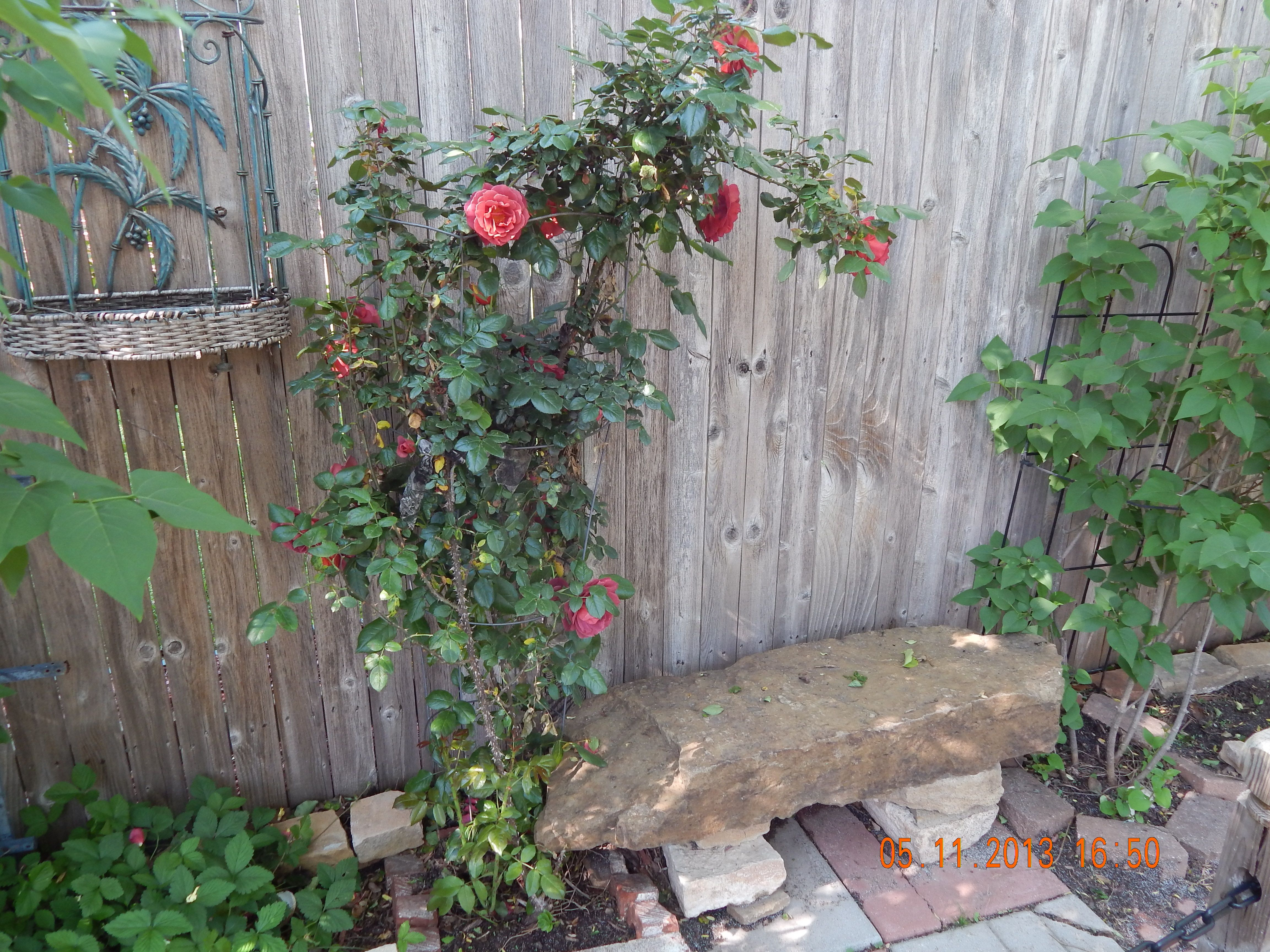 A STONE BENCH ALONG THE FENCE LINE!