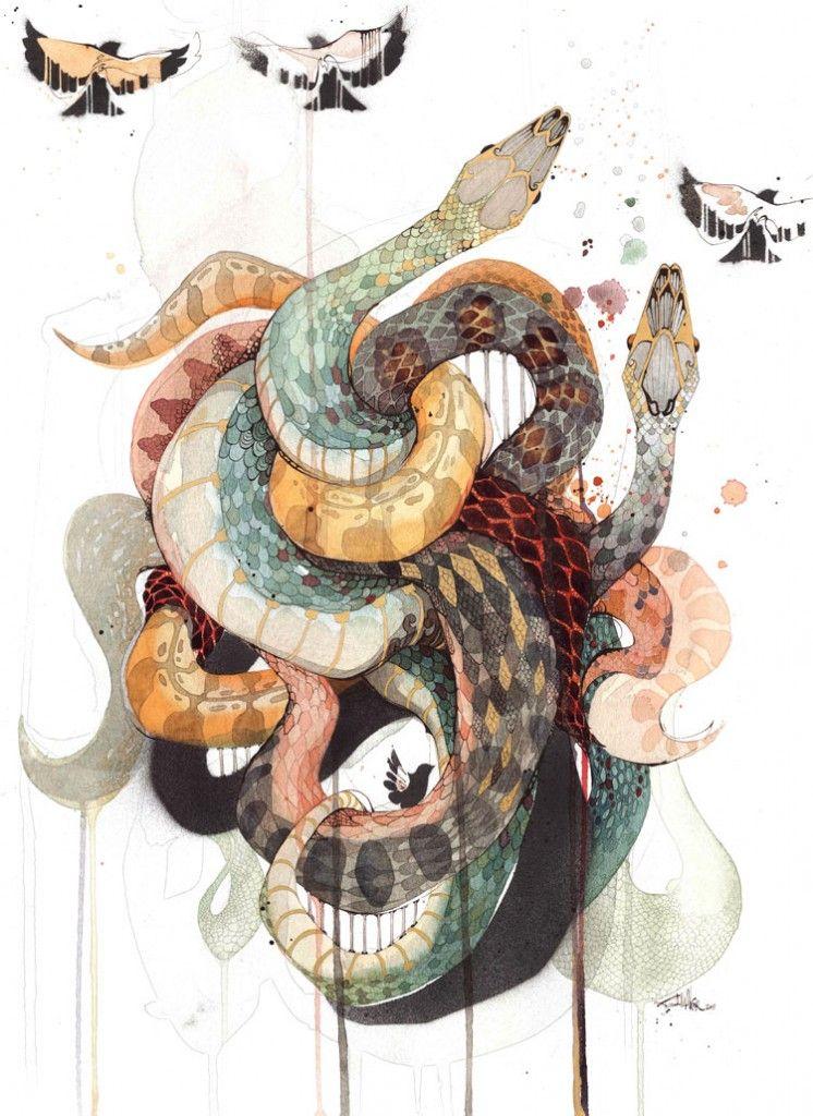 rachel walker art pinterest snake illustrations and tattoo. Black Bedroom Furniture Sets. Home Design Ideas
