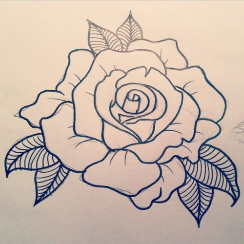 Traditional Flower Line Drawing : Rose tattoo designs google search … pinteres…