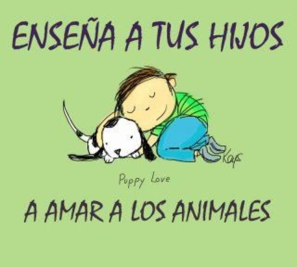 Enseña a tus hijos a amar a los animales <3