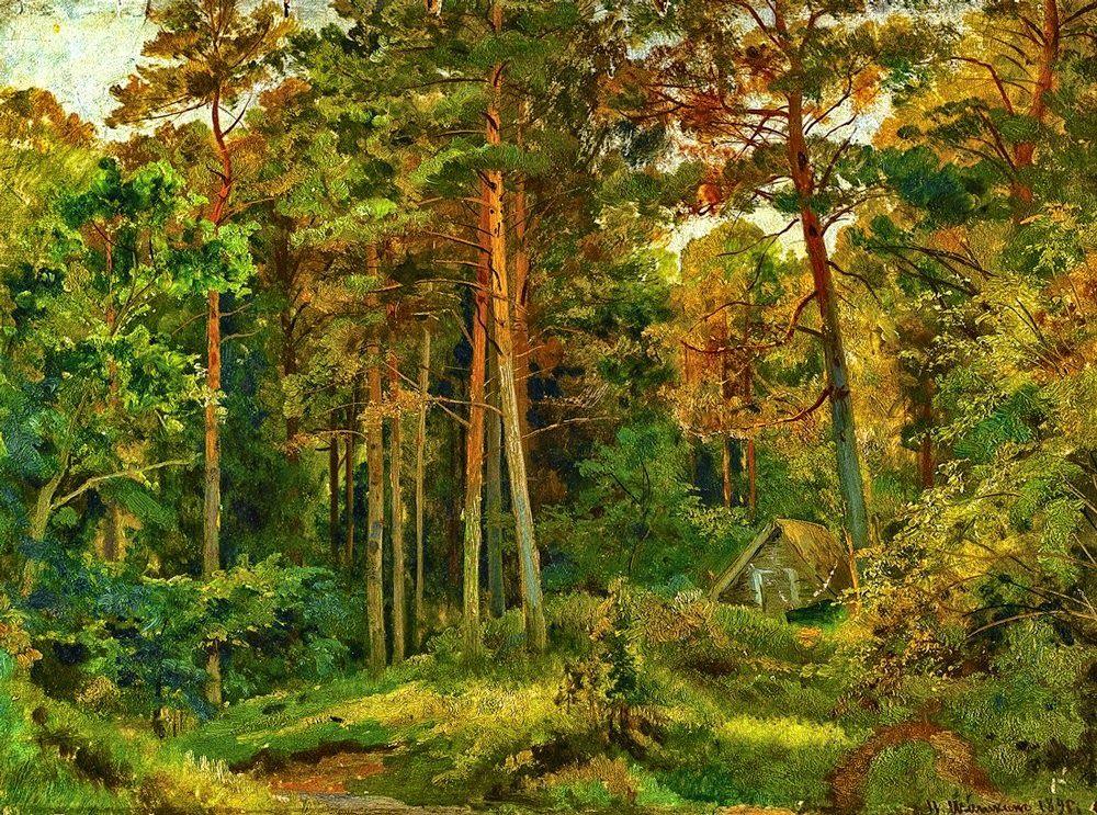 Картинки шишкин лес, цветы любимой