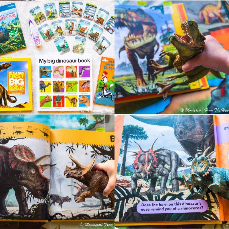 Dinosaur themed unit study dinosaur unit study