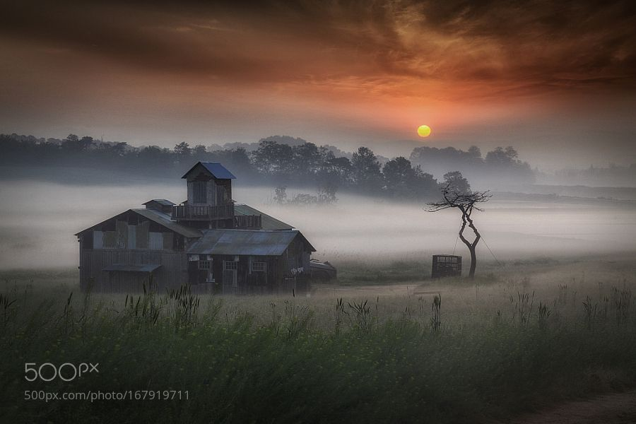 good morning!!(안성) by c1113. Please Like http://fb.me/go4photos and Follow @go4fotos Thank You. :-)