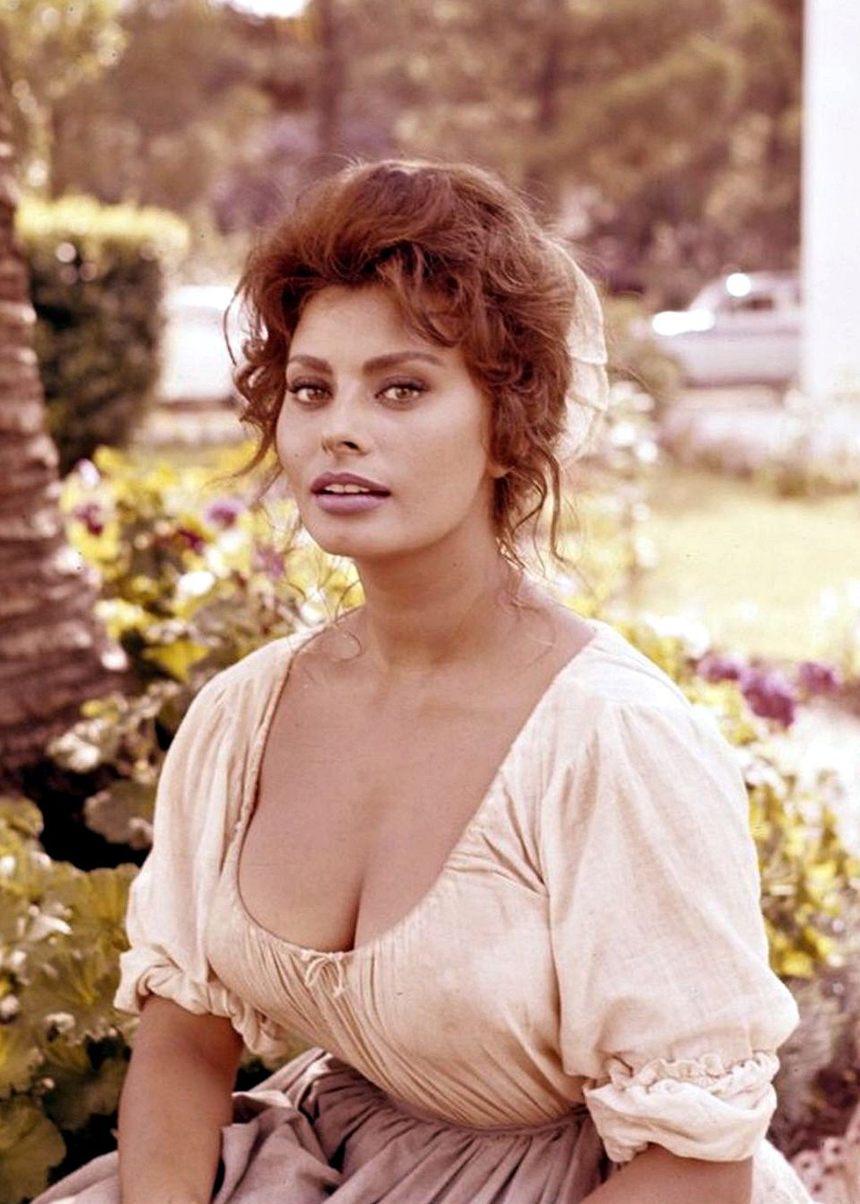 sophia loren on the set of madame c 1961 sirens pinterest