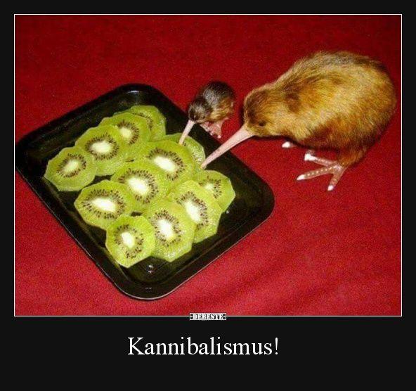 Kannibalismus! | Lustige Bilder, Sprüche, Witze, echt lustig