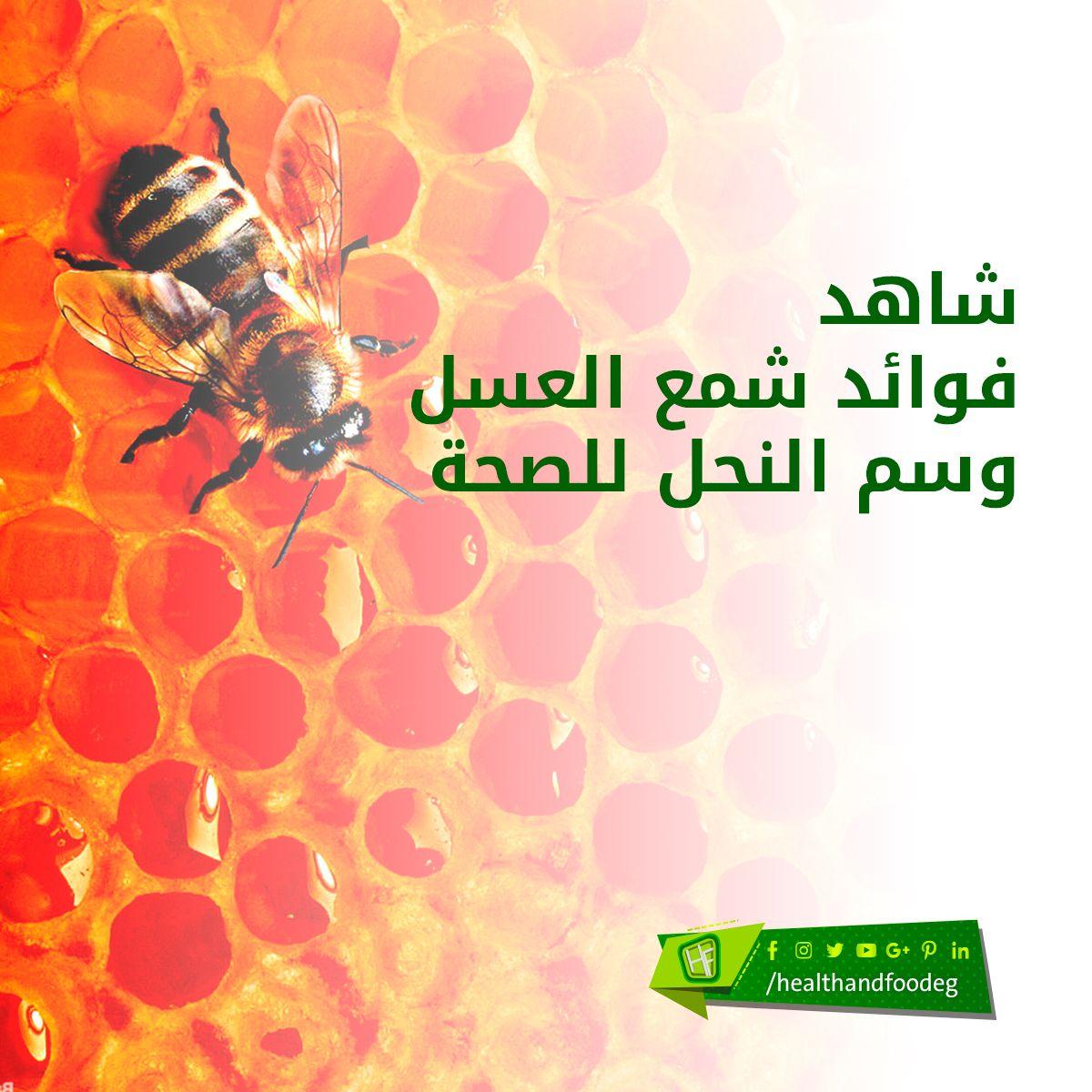 شاهد فوائد شمع العسل وسم النحل للصحة Movie Posters Poster