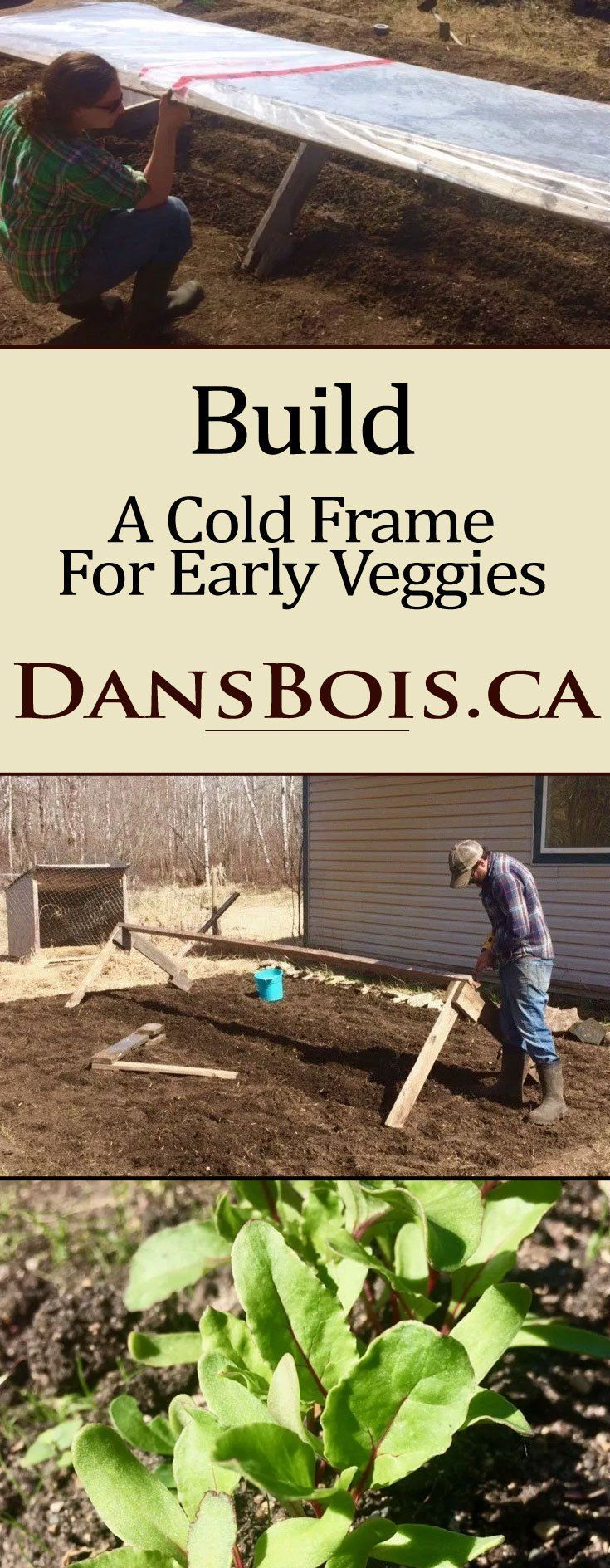 Building A Cold frame For Early Produce Cold frame, Cold