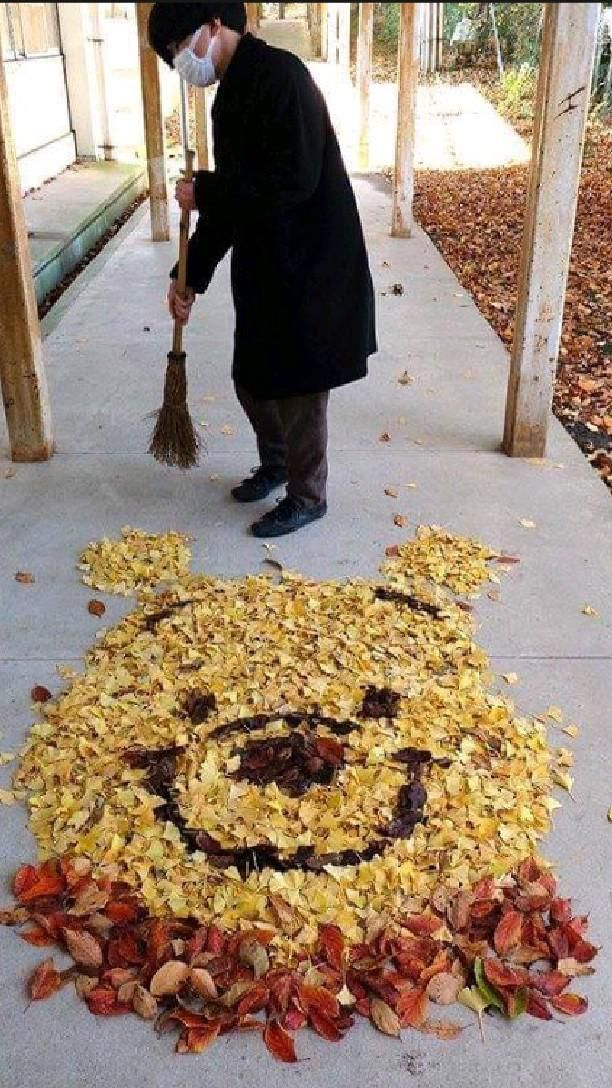 Fallen leaves became art in japan