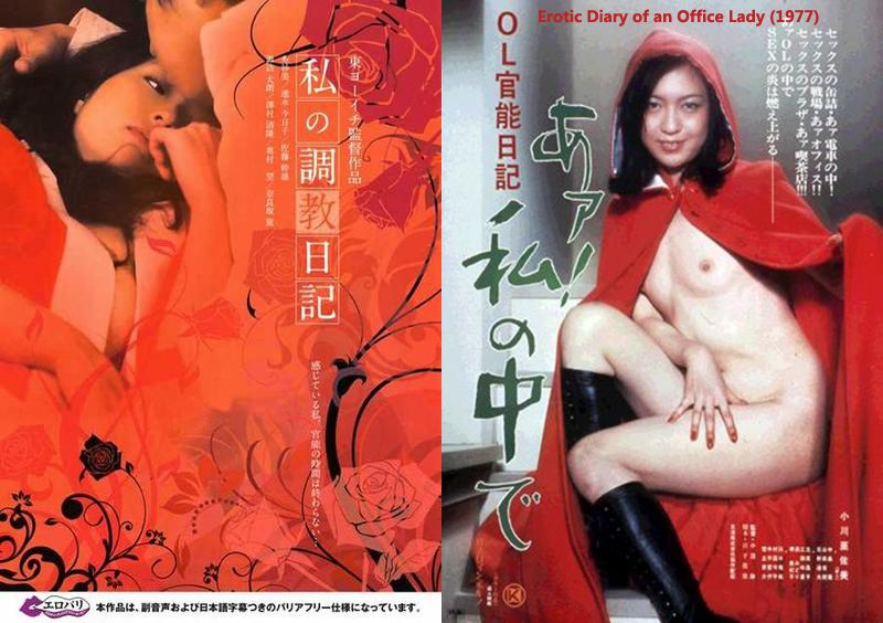 Abstract erotic diary of an office lady confirm
