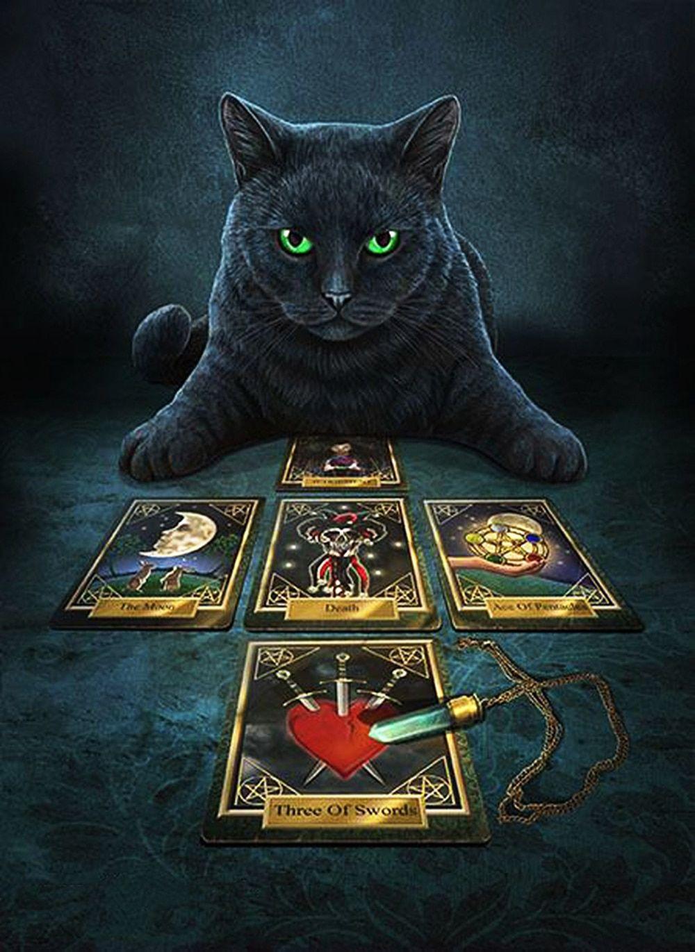 5d diy diamond paintings full round animal tarot black cat