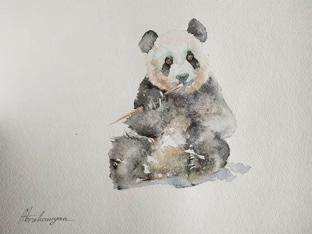 Panda, Animal, Watercolor artwork, Handmade, Original painting on paper #Realism