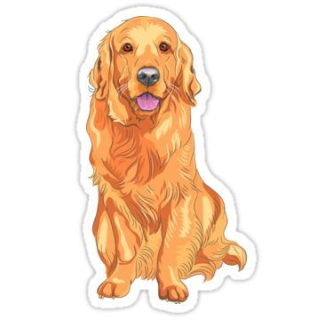 Golden Retriever Sticker Cute Stickers Dog Training