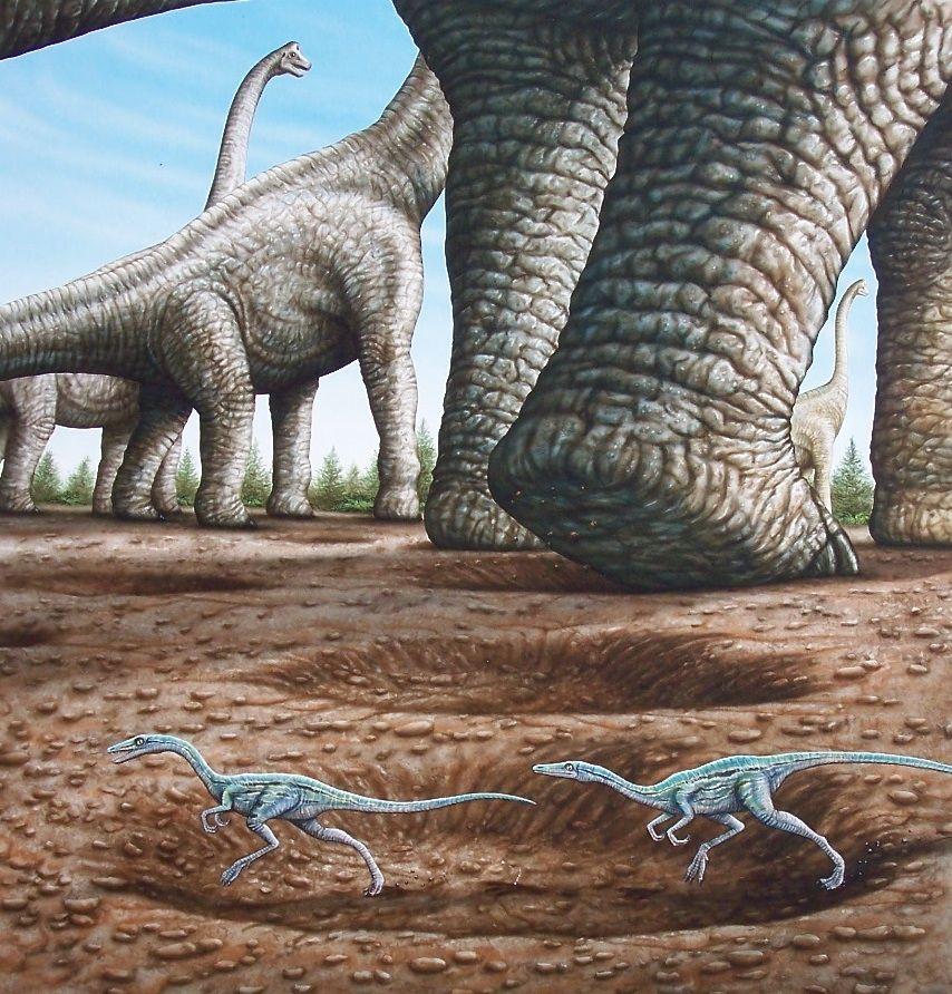 """Coelophysis in Brachiosaurus footprint"" © Phil Wilson - watercolor using airbrush"
