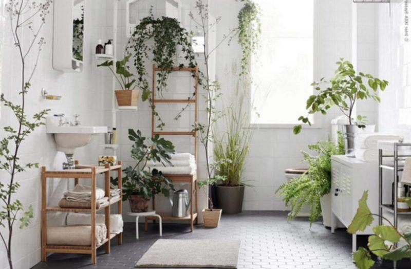 Arredare con piante: foto, idee e consigli   Arredamento ...
