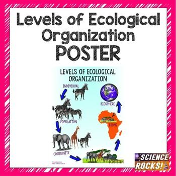 Levels Of Ecological Organization Poster School Ecology