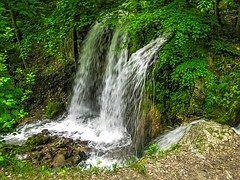 Водопад, Природа, Лес