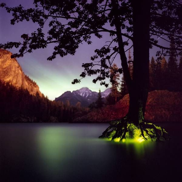 ArtistBarry Underwoodphotographs wonderfully mysterious light installations that he installs on-site in forests, mountainsides, or near lakes and rivers.