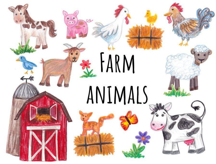Hand Drawn Farm Animals Clipart Farm Clipart Cow Horse Etsy In 2021 Animal Clipart Farm Animals Farm Animals Pictures