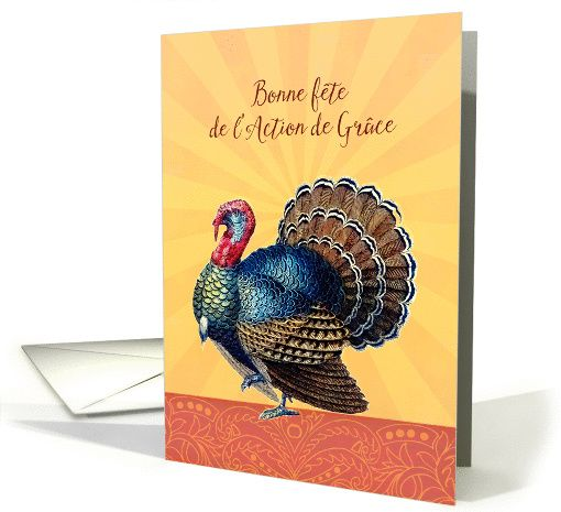 Personalize Any Greeting Card For No Additional Cost Cards Are Shipped The Next Business Day