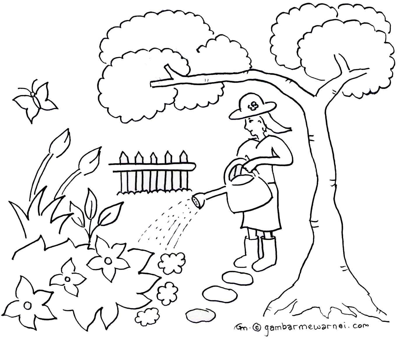 Mewarnai Taman Bunga Sketsa, Buku mewarnai, Warna