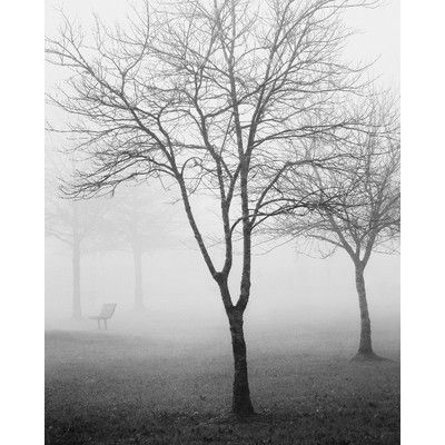 Zatista Limited Edition 'Melton Lake Park, Winter, 2013' by Nicholas Bell Photographic Print