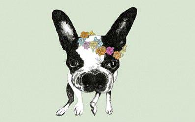Lamina Bull Dog francés | Descargables Gratis para Imprimir: Paper toys, diseño, Origami, tarjetas de Cumpleaños, Maquetas, Manualidades, decoraciones fiestas y bodas, dibujos para colorear, tutoriales. Printable Freebies, paper and crafts, diy