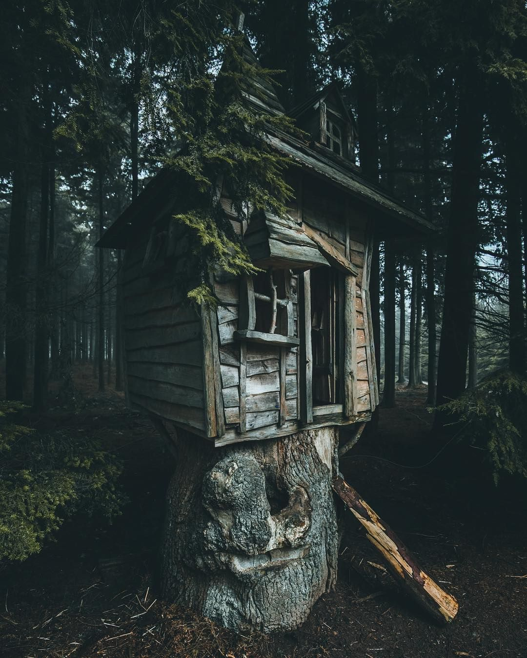 Abandoned Tree House Hidden Away In The Forest Outside Of
