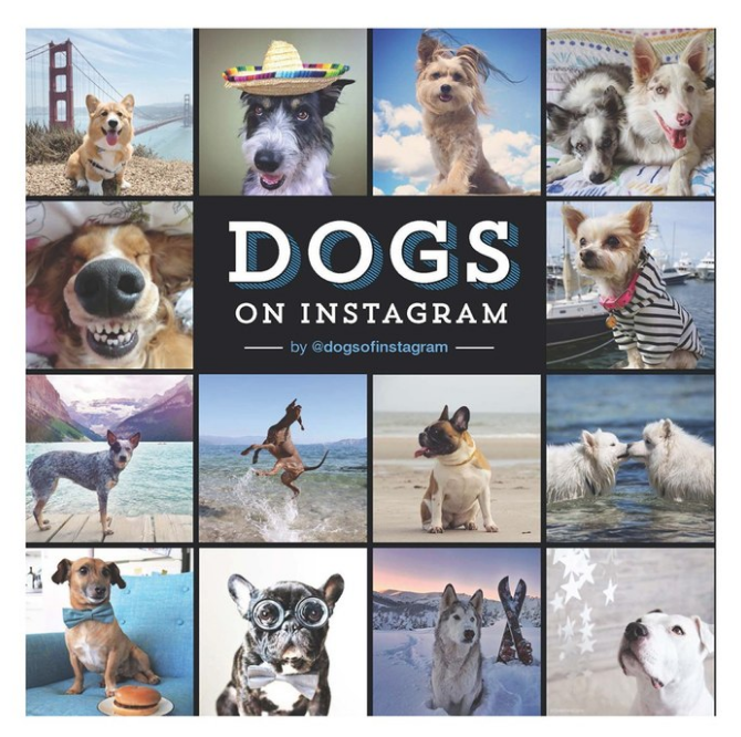 Dogs of Instagram Book