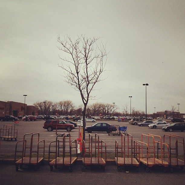 Outside Home Depot, Everett