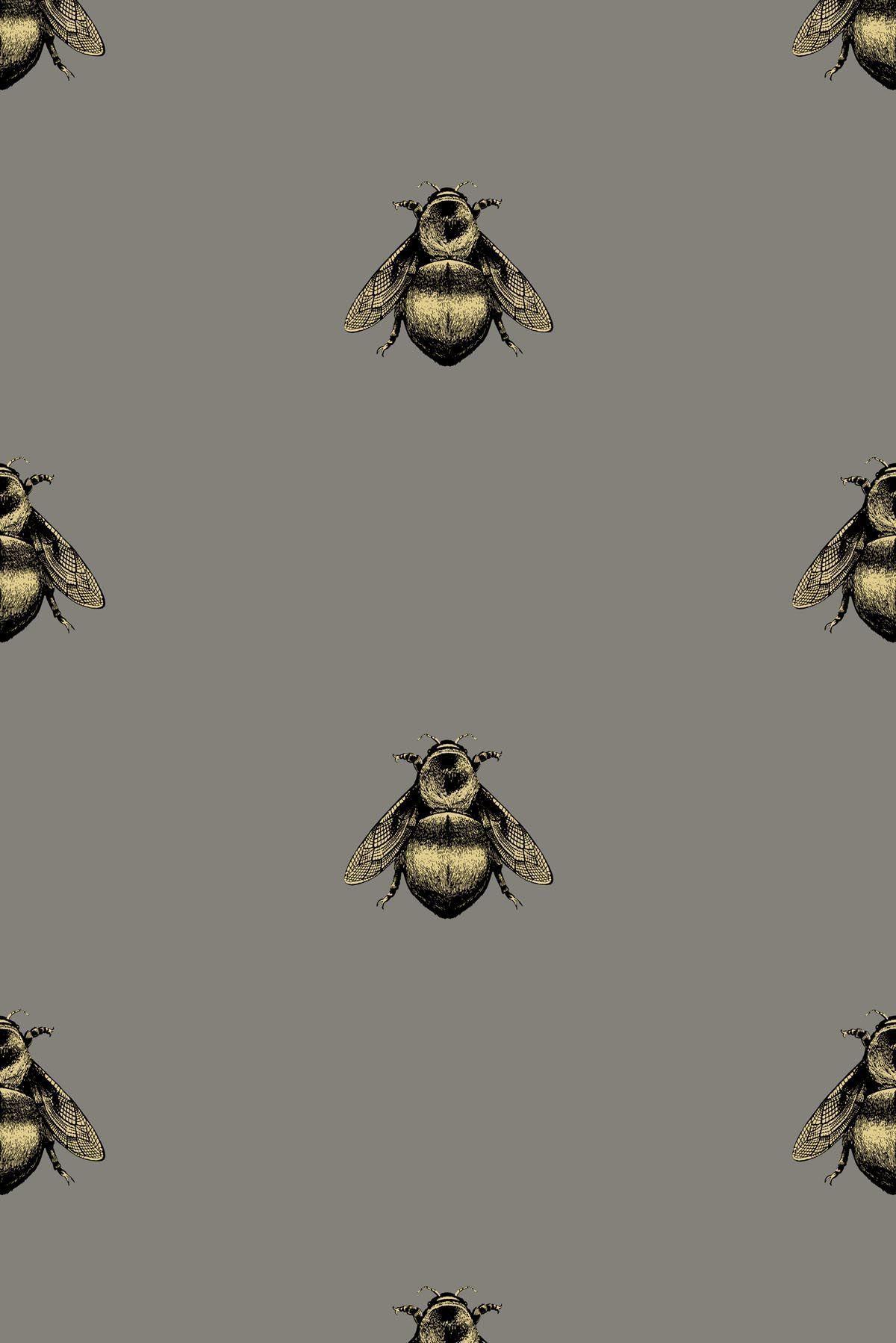 Photo of Napoleon Bee Wallpaper