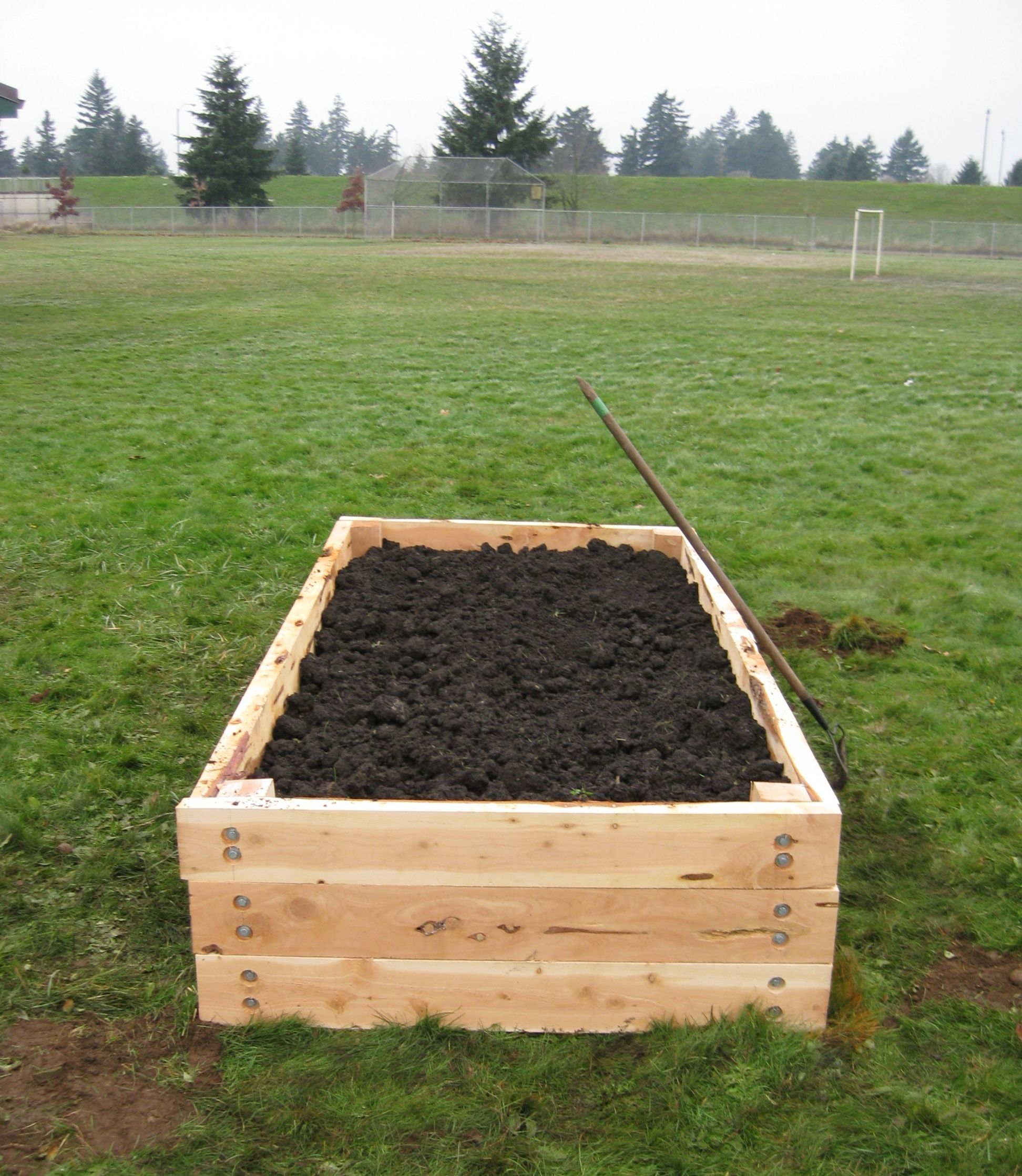 A Simple Raised Bed Built With 2x6 And 4x4 Juniper For An Elementary School Gardening Program Raised Garden Beds Garden Design Layout Raised Garden