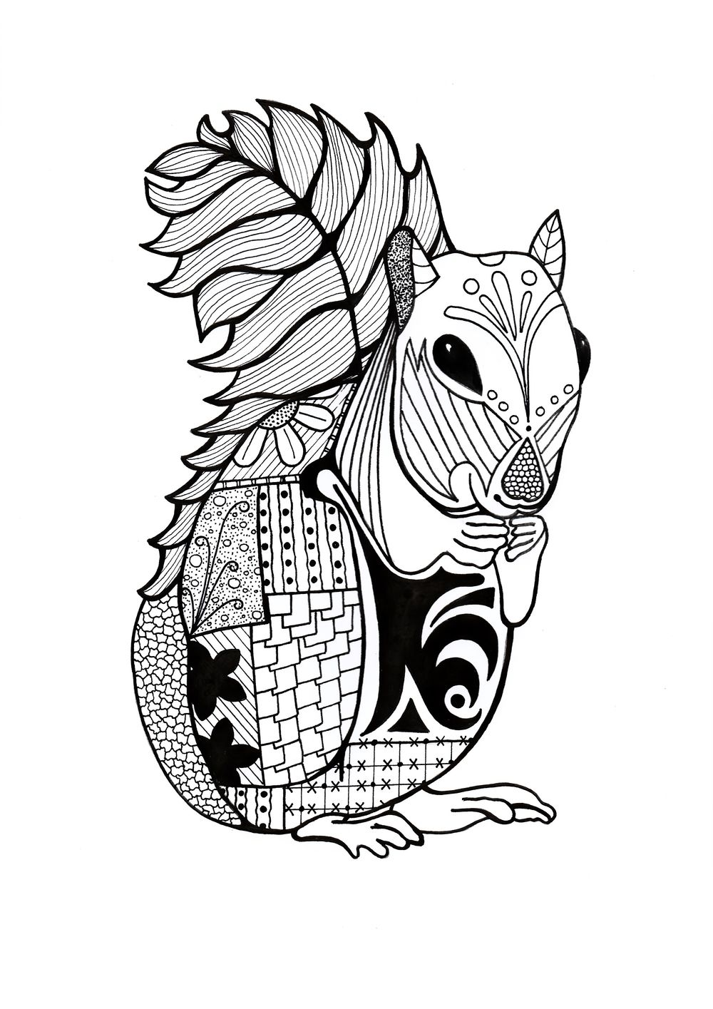 Intricate Squirrel Adult Coloring Page Animal coloring