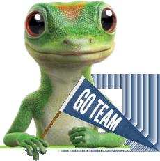 For Presentation Geico Lizard Gecko Lol