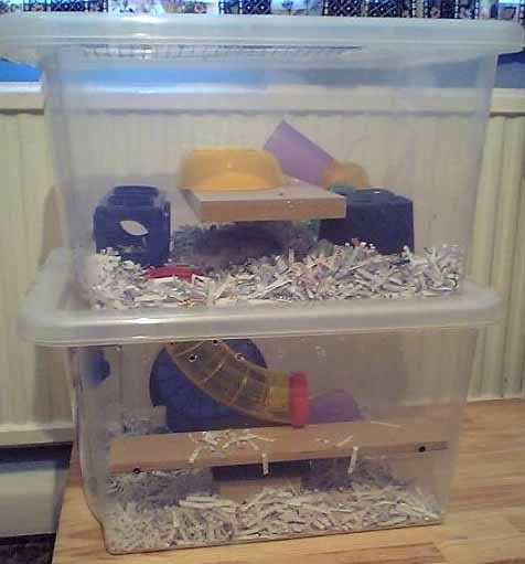 Lets See Your Homemade Cages Reptile Forums Hamster Diy Hamster Cages Hamster Cage
