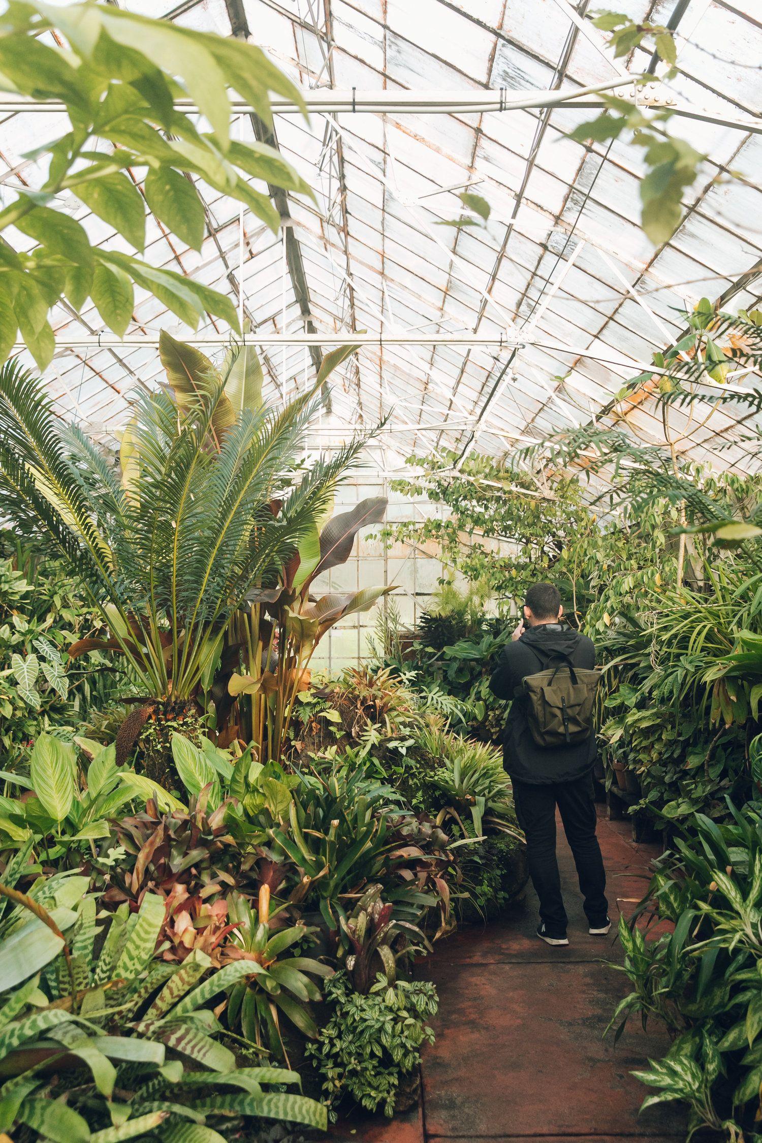 Royal Botanic Garden Victoria — Melbourne   Botanical ...