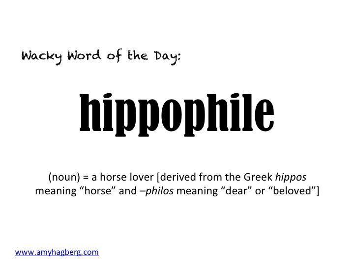 Hippophile
