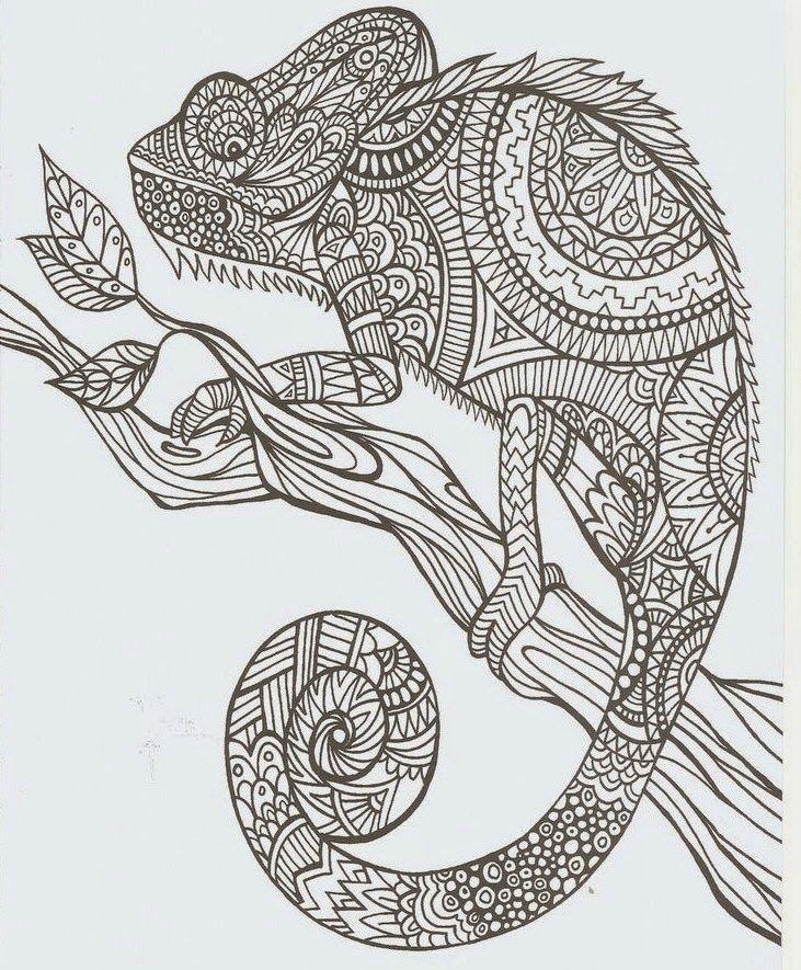 Resultado De Imagen Para Dibujo Dificiles Mandalas Animales