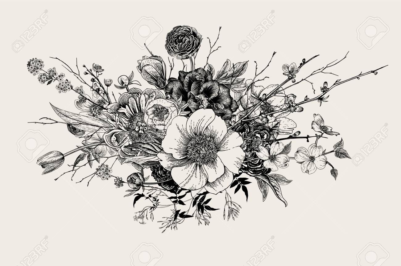 Stock Vector Flower bouquet drawing, Vintage flower