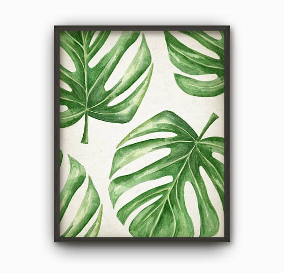 Tropical Leaf Watercolor Art Print Monstera Swiss Cheese Plant